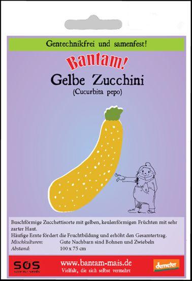 Bantam Zucchini in